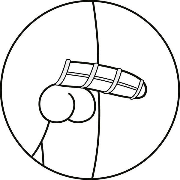 Penis Funda Placer Pene 3