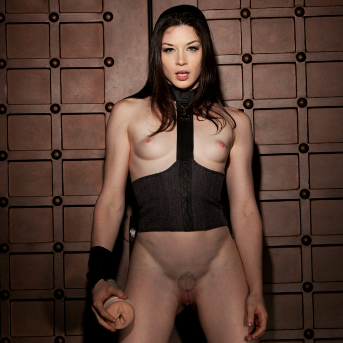 Fleshlight Girls Stoya Vagina Destroya 5