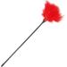 Imagen Miniatura Darkness Pluma Estimuladora Rojo 42cm 1