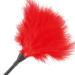 Imagen Miniatura Darkness Pluma Estimuladora Rojo 42cm 2